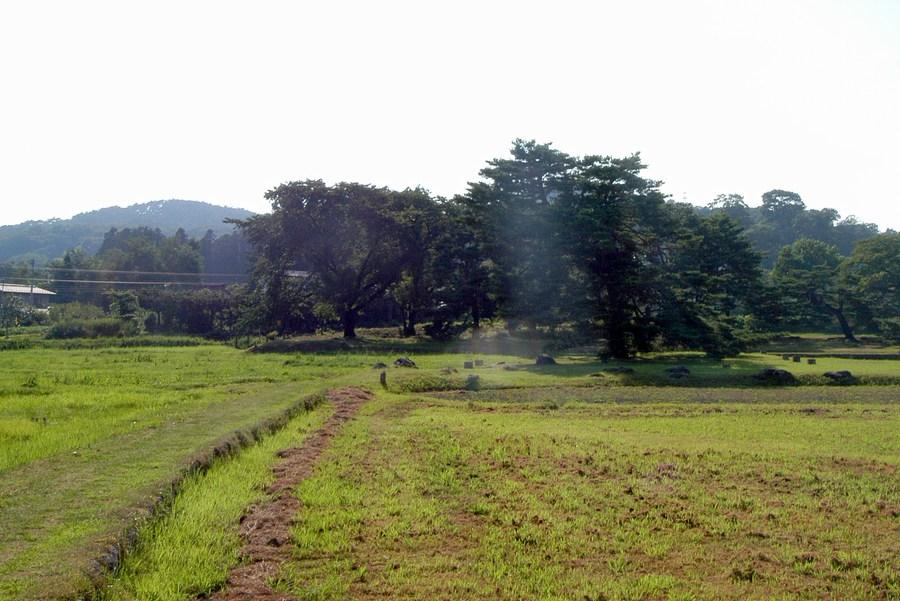 無量光院跡の画像 p1_35