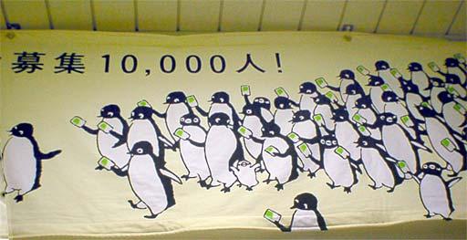 Pingwiny w natarciu!